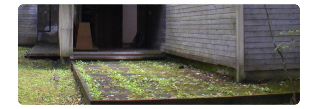 高湿度による基礎と建物の被害